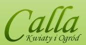 Calla - Kwiaty i Ogród